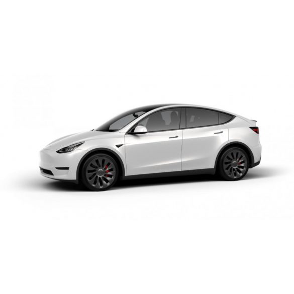 Model Y Performance AWD Pearl White Multi-Coat